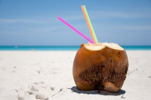 coconut-on-the-beach-1212573-m